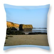 Big Rock On San Simeon Beach Throw Pillow