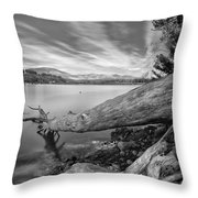 Big Roots Time Traces Throw Pillow