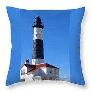Big Sable Throw Pillow