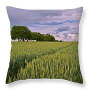 Big Sky Montana Wheat Field  Throw Pillow