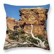 Big Spring Canyon Overlook Throw Pillow