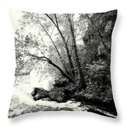 Big Spring In B And W Throw Pillow