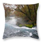 Big Spring Throw Pillow