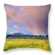 Big Storm And Tornado At Sunset Throw Pillow