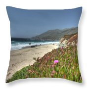 Big Sur Beach Throw Pillow by Jane Linders