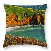 Big Sur California Coastline Throw Pillow