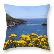 Big Sur Loves Yellow By Diana Sainz Throw Pillow