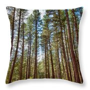 Big Valley Views Mvsta Trail Throw Pillow
