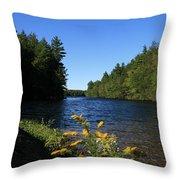 Bigelow Hollow  Throw Pillow
