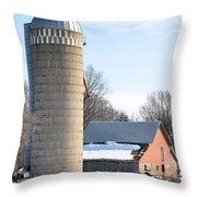 Bigger Than The Barn Throw Pillow