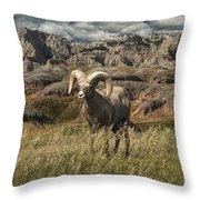 Bighorn Ram In The Badlands Throw Pillow