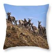 Bighorn Sheep At Blue Mesa Reservoir Throw Pillow