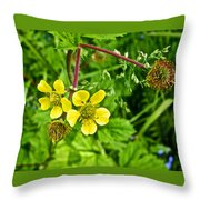Bigleaf Avens Along Skunk Cabbage Trail In Mount Revelstoke National Park-british Columbia    Throw Pillow