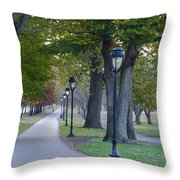 Bike Path Along Kelly Drive Throw Pillow