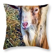 Billy Goat Closeup Throw Pillow