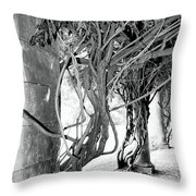 Biltmore Arbor Asheville Nc Throw Pillow