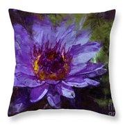 Biltmore Estate Water Lily Garden #2 Throw Pillow