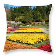 Biltmore Gardens  Throw Pillow