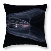 Biolumiescent Comb Jelly Throw Pillow