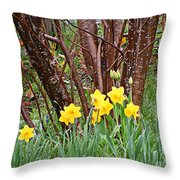 Birch And Daffiodils Throw Pillow
