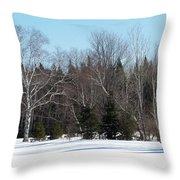 Birch And Evergreen Throw Pillow