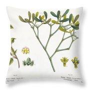 Birch And Mistletoe Throw Pillow