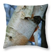 Birch Bark Study No.1 Throw Pillow