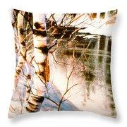 Birch By Stream Throw Pillow