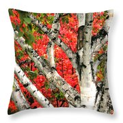 Birch Eclipsing Maple Throw Pillow