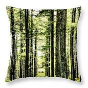 Birch Forest Fractal Throw Pillow