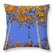 Birch Grove Throw Pillow by Cynthia Decker