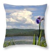 Birch Lake Iris Throw Pillow