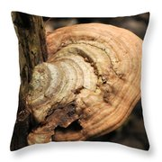 Artist's Conk  Throw Pillow