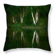 Birch Reflection Throw Pillow