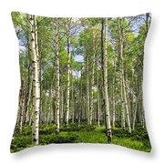 Birch Tree Grove In Summer Throw Pillow