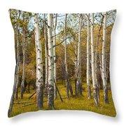 Birch Tree Grove No. 0126 Throw Pillow