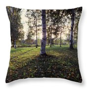 Birch Trees, Imatra, Finland Throw Pillow