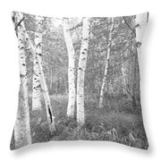 Birch Trees In A Forest, Acadia Throw Pillow