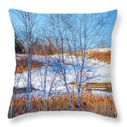 Birches And Cattails Throw Pillow