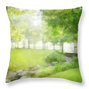 Birches And Stream Throw Pillow