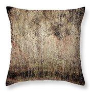 Birches In Winter Throw Pillow