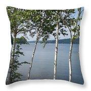 Birches On Sunapee Throw Pillow