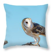 Bird 11 Throw Pillow