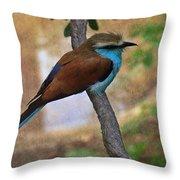Bird 6 Throw Pillow
