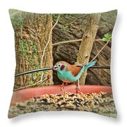Bird And Feeder Throw Pillow