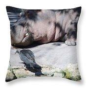 Bird And Hippo Throw Pillow