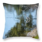 Bird And Pond Throw Pillow