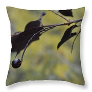 Bird Bait Throw Pillow