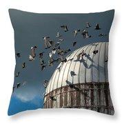 Bird - Birds Throw Pillow by Mike Savad