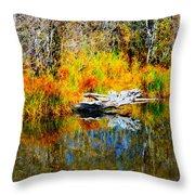 Bird Branch Reflection Throw Pillow